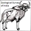 Zoological Survey of India Logo