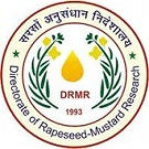 DRMR Logo