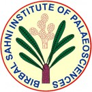 BSIP Logo