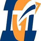 IGI Aviation Logo